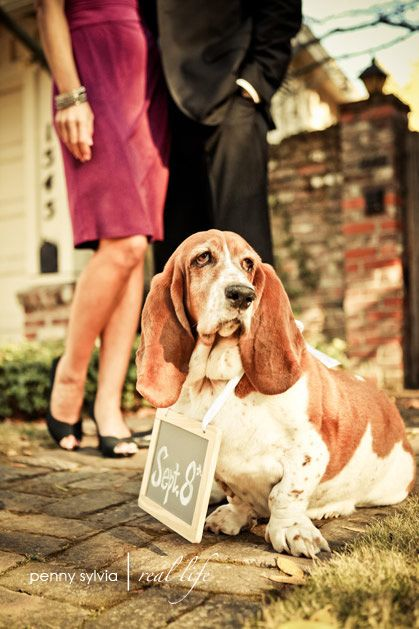 Wedding Save the Date.. bc we all know I have a puppy obession. it will have a dog before a man... so this is perfect!