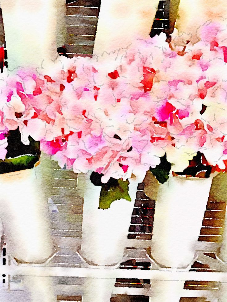 FLOWERS FOR SALE by CRussellPhotography on Etsy