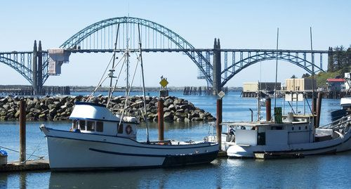 Fishermen selling crabs from their boats at the docks in for Newport oregon fishing charters