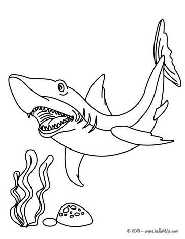 Tiger Shark Coloring Page Nice Coloring Sheet Of Sea World More Content On Hellokids Com Shark Coloring Pages Animal Coloring Pages Coloring Pages