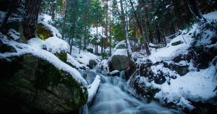 Camping Weekend Essentials in Sequoia National Park | USA