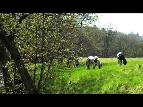▶ Countryside around Colne - YouTube