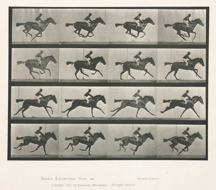 Time-lapse photographs of a rider taking a horse over a