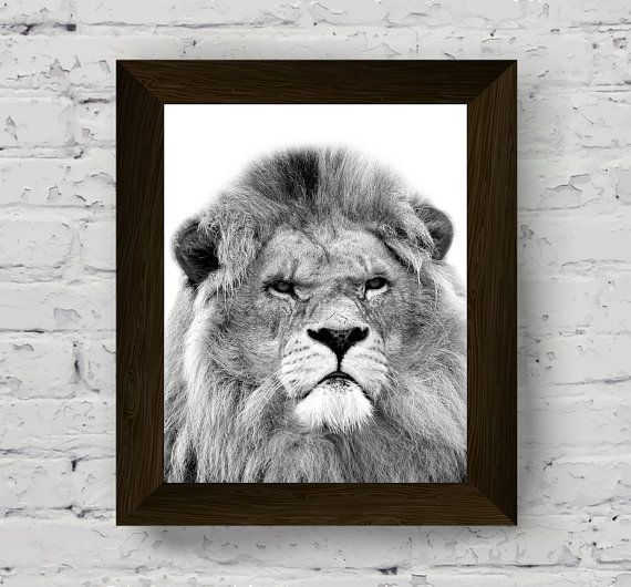 lion print, animal wall art, jungle animal photography, wall art prints, printable artwork, instant digital download, home decor