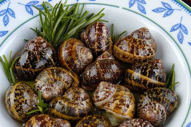 Chochli boubouristi!  Boil the snails for about 15 minutes. Wash away and let them strain. Put some salt in a frying pan and add the snails with the mouth looking down and let them boil in slow fire without oil and water for about ten minutes. Then, add the olive oil and let them fry for about 6 minutes. Add the rosemary and continue the boiling a little more.