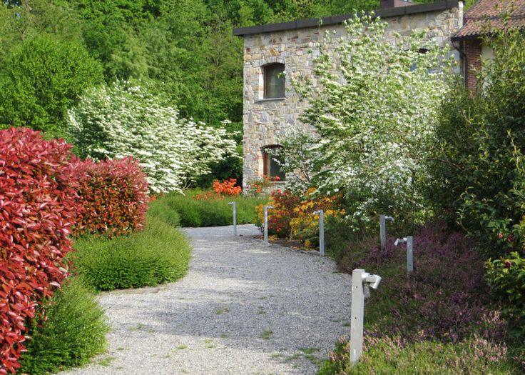 Oltre 25 fantastiche idee su progettazione di giardini su for Progettazione giardini milano