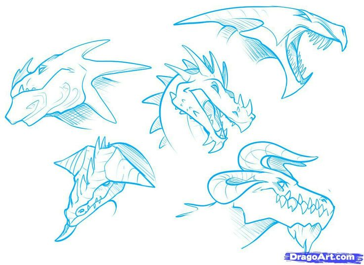How To Draw Anime Dragon