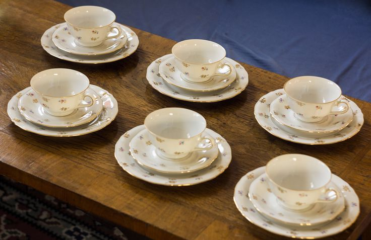 Winterling Porzellan Bavaria porcelain teacup and saucer set with dessert plates.