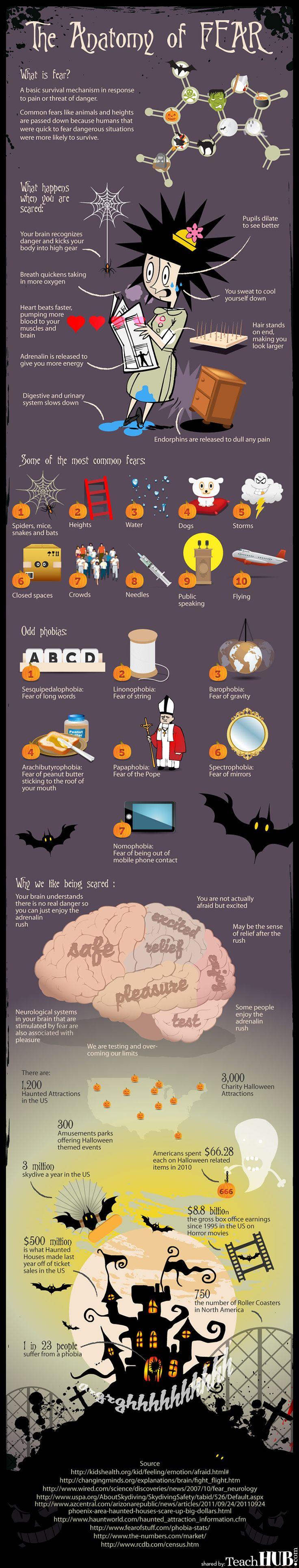 Anatomy of Fear Halloween Infographic www.teachhub.com