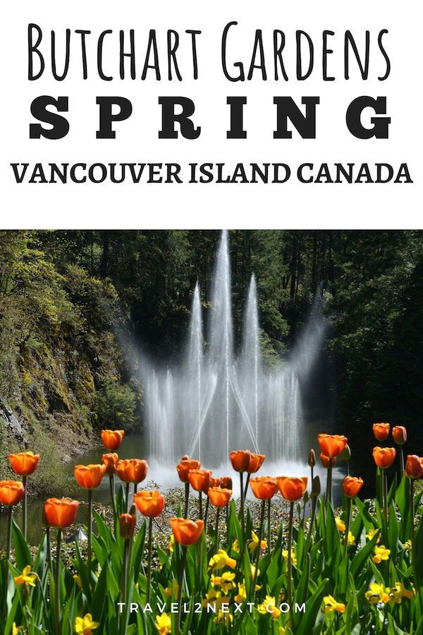 b382a31dcce6f6b2f86c57d2a37f4b7f - Butchart Gardens Best Month To Visit