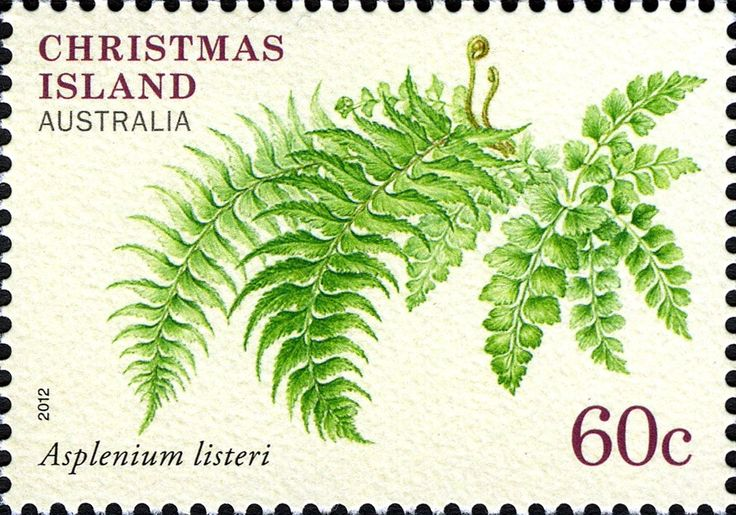 Pin by Mashimaro on StampDsign in 2020 Christmas island