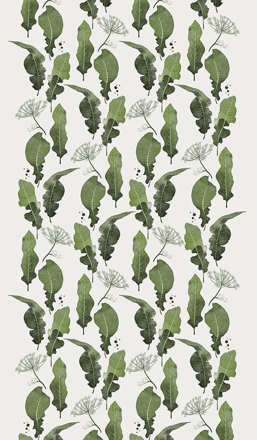 Botanical Illustration from @alwierzbicka