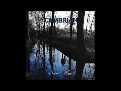 Home: Cambrian - Point of Origin