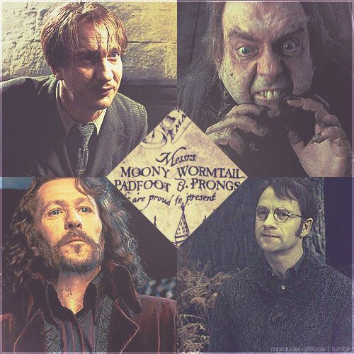 marauders: Potter Stuff, Moony Wormtail, Wormtail Padfoot, Mischief Managed, Harrypotter, Harry Potter, The Marauders, Boy