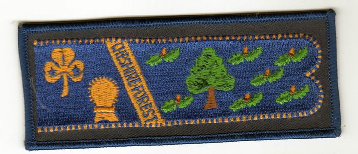 Girl Guides CHESHIRE FOREST GUIDES Country Standard Crest UK Patch New Scouts