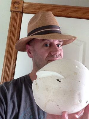 Indiana Magnum finds a giant puffball. Watch the video on Periscope!
