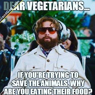 Preach #zachgalifianakis #humor #comedy #instalike #comedians #entertainment #people #love #acting #creative #create #celebrities #glossylips #laughter #celebrityfashion #fun #live #model #highfashion #swimsuit #fitness #lifestyle #superstar #celebrity #sexybitch #entertainmentnews #fashion #instafamous #instagood #lasagna http://tipsrazzi.com/ipost/1523132332348565912/?code=BUjQMlPjGmY
