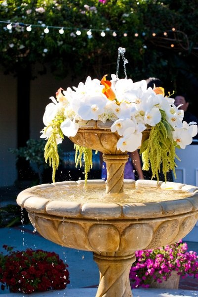 1000 Images About Flowers Fountains On Pinterest