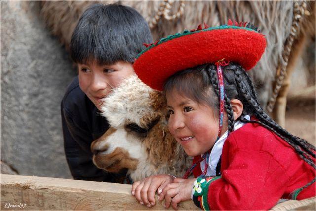 Cusco, Cusco, Portrecik z lamą, PERU