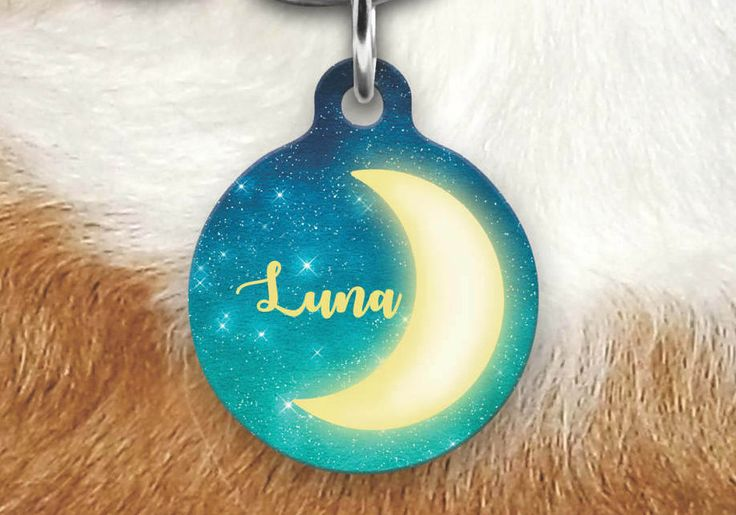 Moon Pet Tag - Girly Pet Tag - Dog Tag For Dogs - Personalized Pet ID Tag - Luna Customized Name Pet Tag - Dog Tag - Custom Dog Tag by MysticCustomDesignCo on Etsy