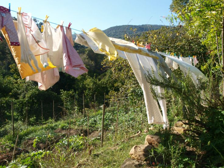 Nuestra ropa mecida por el viento.
