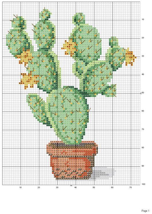 Gallery.ru / Фото #23 - cactus - patrizia61