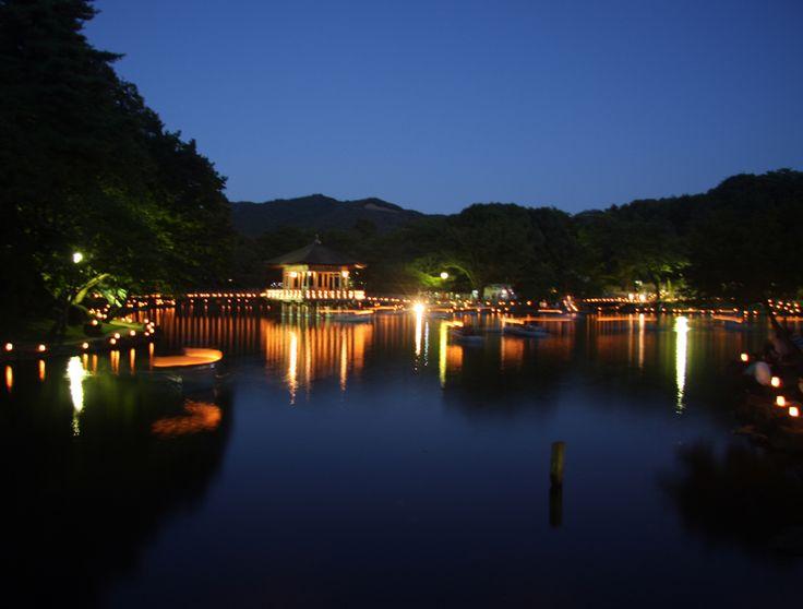 奈良公園 なら燈花会(とうかえ) 浮見堂 : 魅せられて大和路