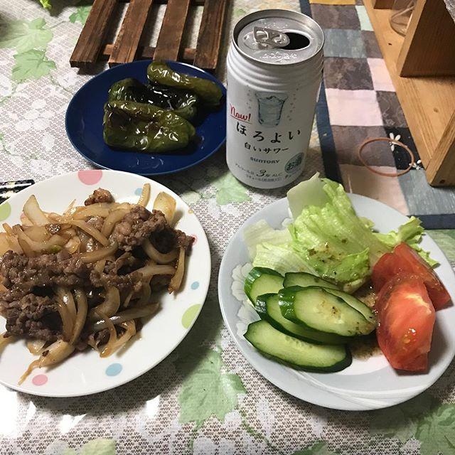 今日から6月。 1日お疲れ様〜 ダンプのキャブチルトの修理ばかりで疲れた( ;´Д`) #夕食 #ピーマン #トマト #肉 #レタス #きゅうり #酎ハイ