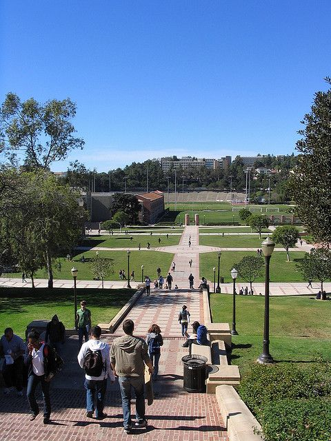 Bruin Walk, UCLA Campus, Los Angeles, CA.  Photo: mbudisic, via Flickr