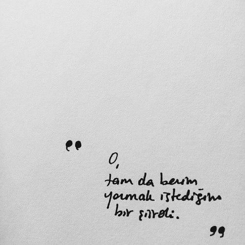 Tam da yazmak istediğim bir şiirdi.