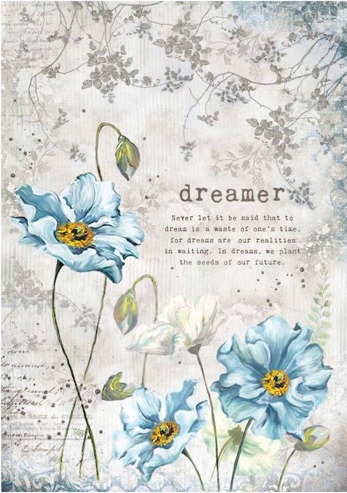 Stamperia Rice Paper A4 , Dreamer (DFSA4249)