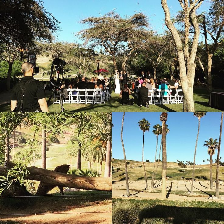 A perfect afternoon for a Safari Park #wedding