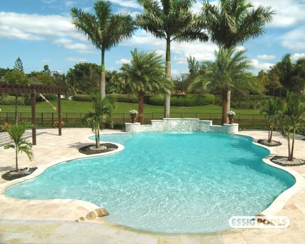 Pin By Julie Gray On Pool In 2020 Residential Pool Beach Entry Pool Swimming Pools Backyard