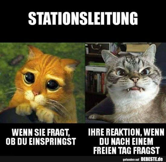 Stationsleitung.. | Lustige Bilder, Sprüche, Witze, echt lustig – Marisa Porriciello