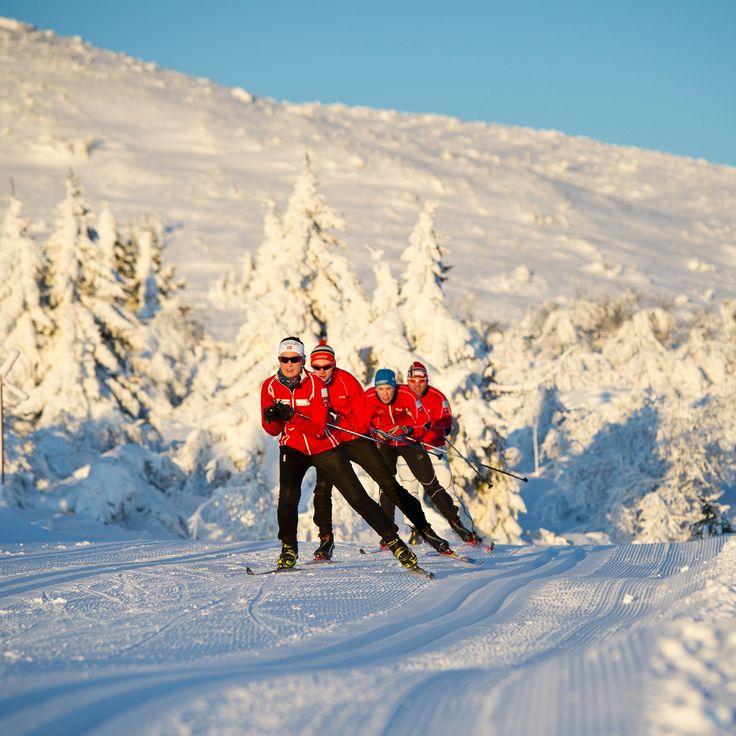 America's Nordic Skiing Meccas