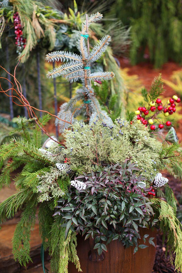 684 best g container gardening images on pinterest gardening