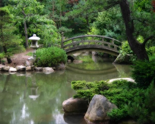 37 best images about pond ideas on pinterest natural for Japanese koi pond garden design