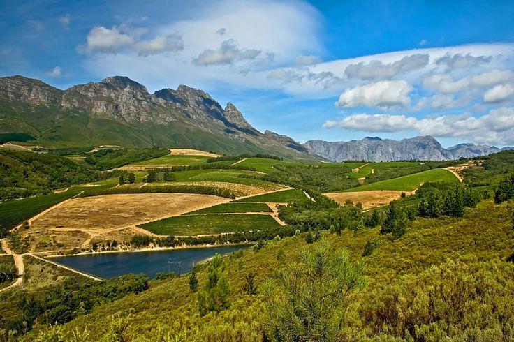 Stellenbosch Wine Route - Stellenbosch, Western Cape
