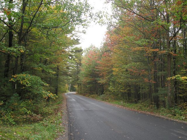 Narrows Road in the Autumn.
