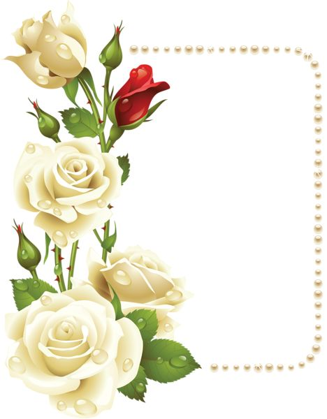 Large Transparent Frame with White Roses and Pearls