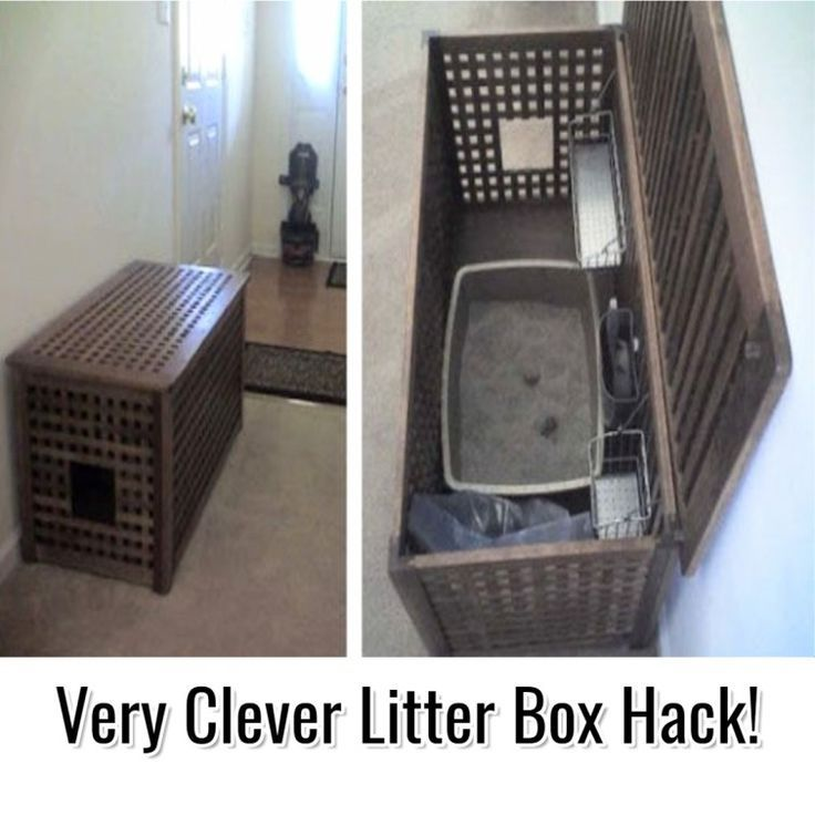 Creative Storage Solutions For Small Spaces Decluttering Your Life Ikea Hack Storage Ikea Diy Litter Box