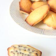 Madeleines – Citron Bergamote et pépites Choc' | ©lilopirat'