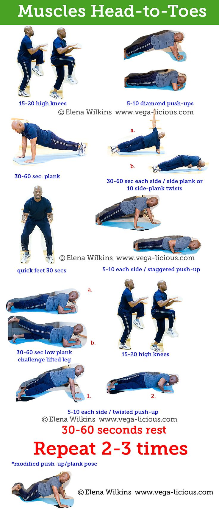 All about Push-Ups and Planks   Muscles Head-to-Toes Workout Routine
