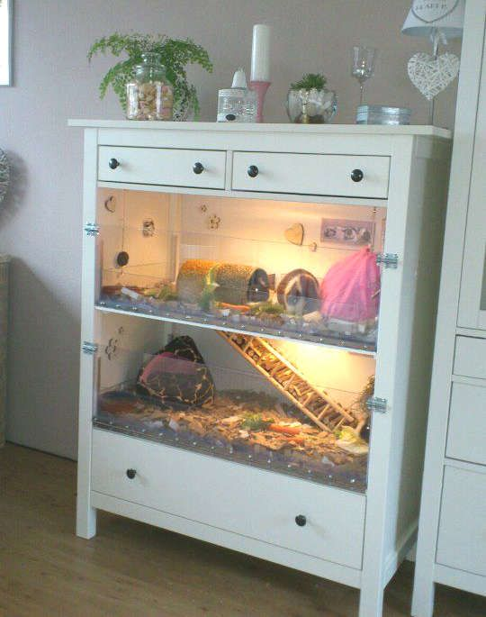 Maison pour hamster dans une commode