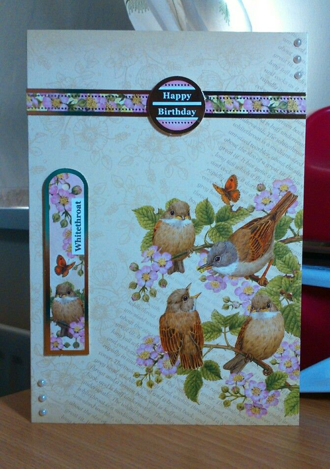 Hunkydory Birds of Britain card by Sandie...