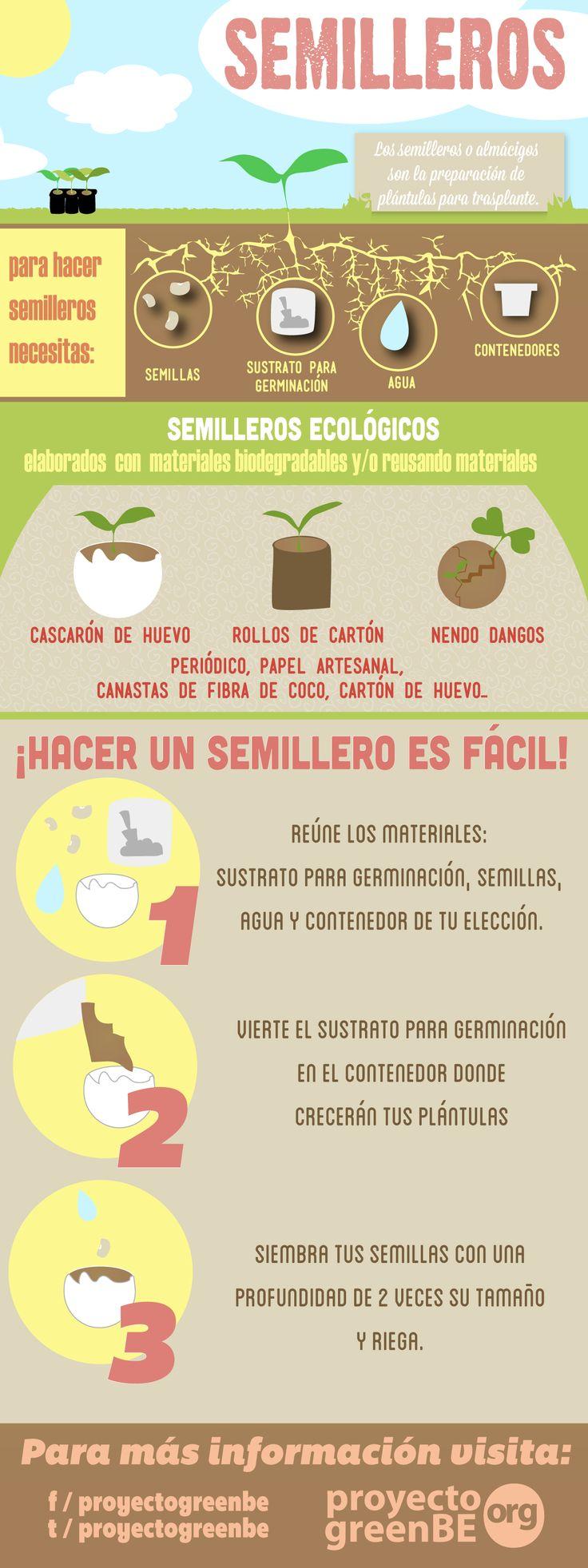 ¿Sabes cómo elaborar semilleros? Da click en el post para ver la explicación sencilla del infográfico: semilleros!