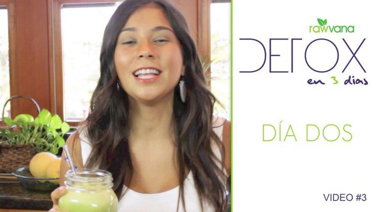 DETOX de Jugos en 3 dias- Dia 2,- 3 Day Juice DETOX , Day 2