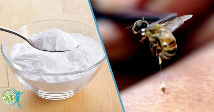 When bees sting a person, they inject venom. This venom penetrates into the skin and causes redness and a painful reaction of the skin. However, not all bees die from injecting a person. Some can