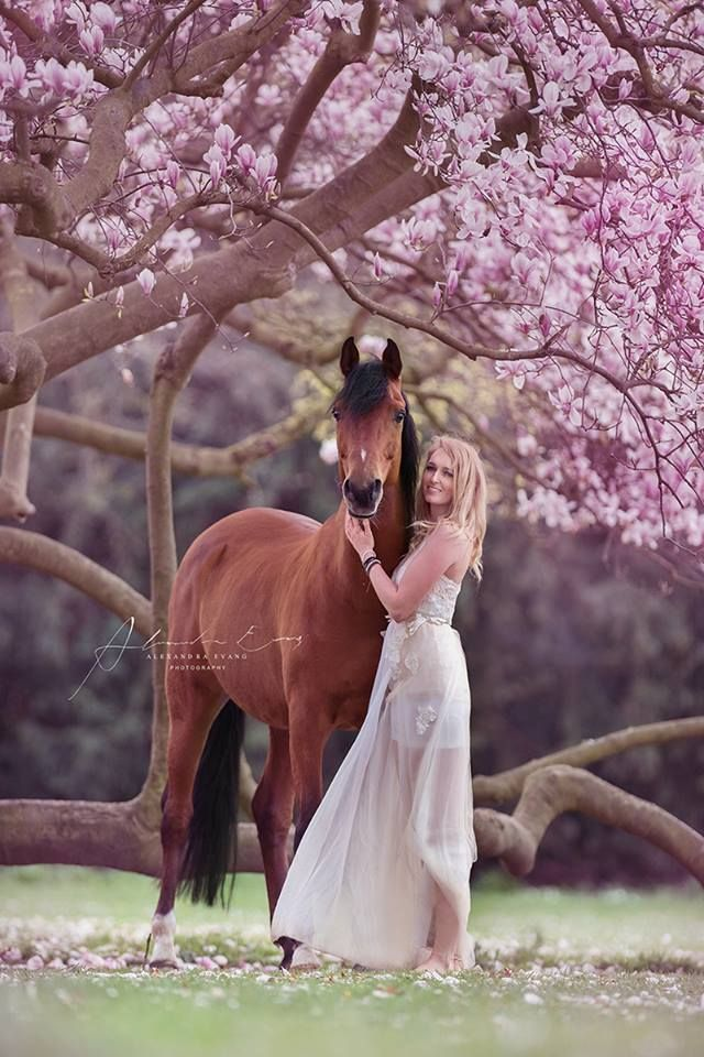 Magical...horse, lady and pink flowering trees. Alexandra Evang Photography