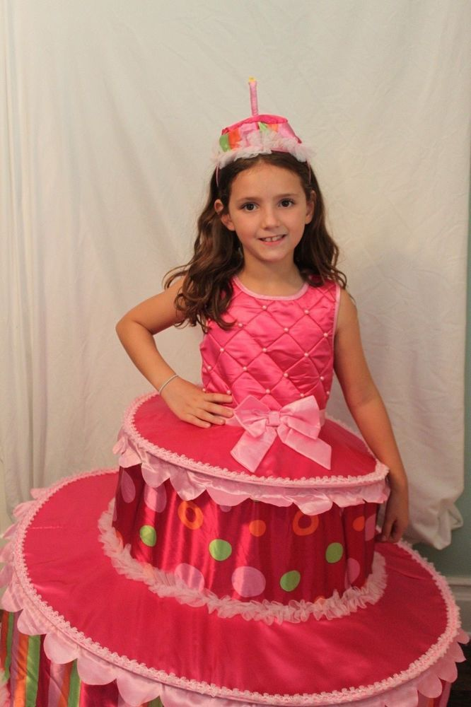 birthday cake costume 124 best costumes 2016 images on 1738